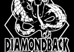 DiamondBack-Art-300-x-500